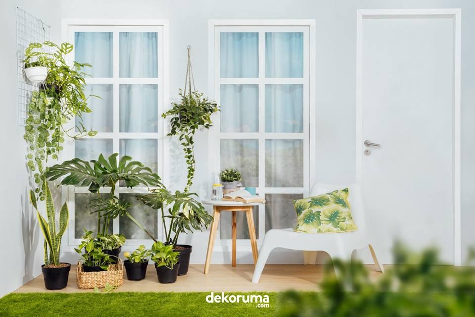 Cara Menata Pot Bunga Di Teras Rumah Sederhana - Content