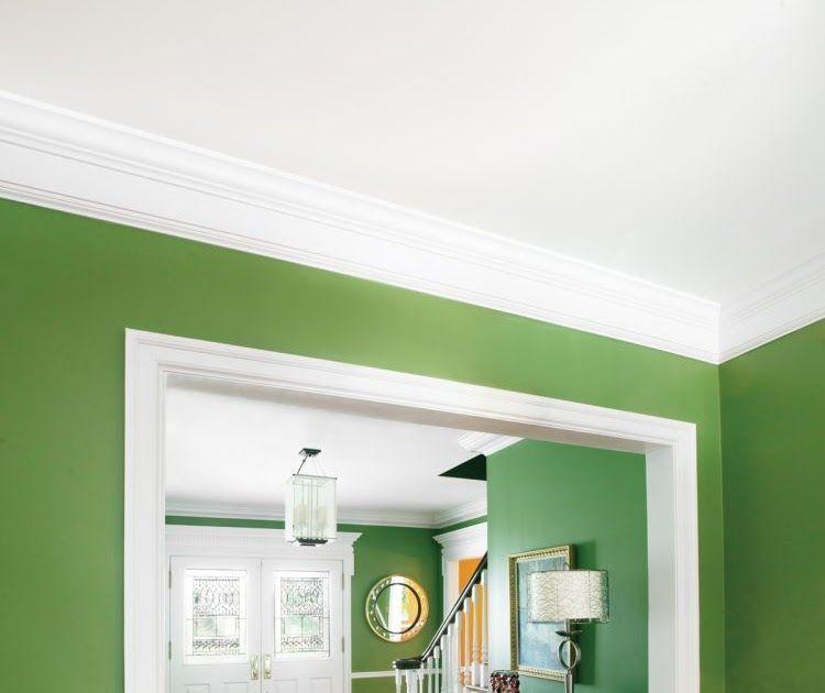 rumah minimalis tampak depan warna cat rumah bagian dalam yang elegan